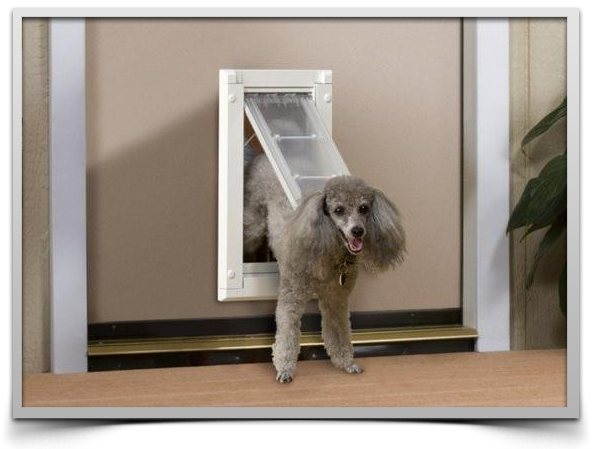 inpatio pet doors