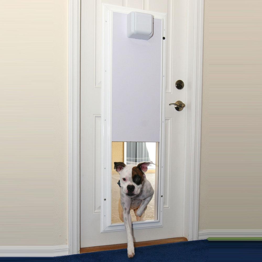 PlexiDor® Electronic Door Mount